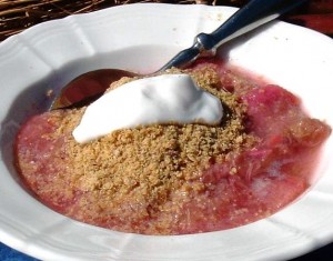 Raw ground golden linseed with natural yoghurt and rhubarb compote